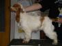 Keiko z Horní Lipky - 7. měsíců